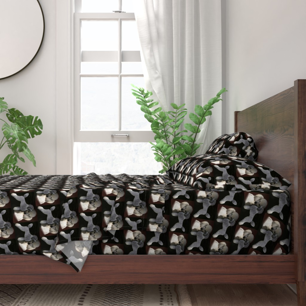 Poodles Grey White Dark Black Brown 100% Cotton Sateen Sheet