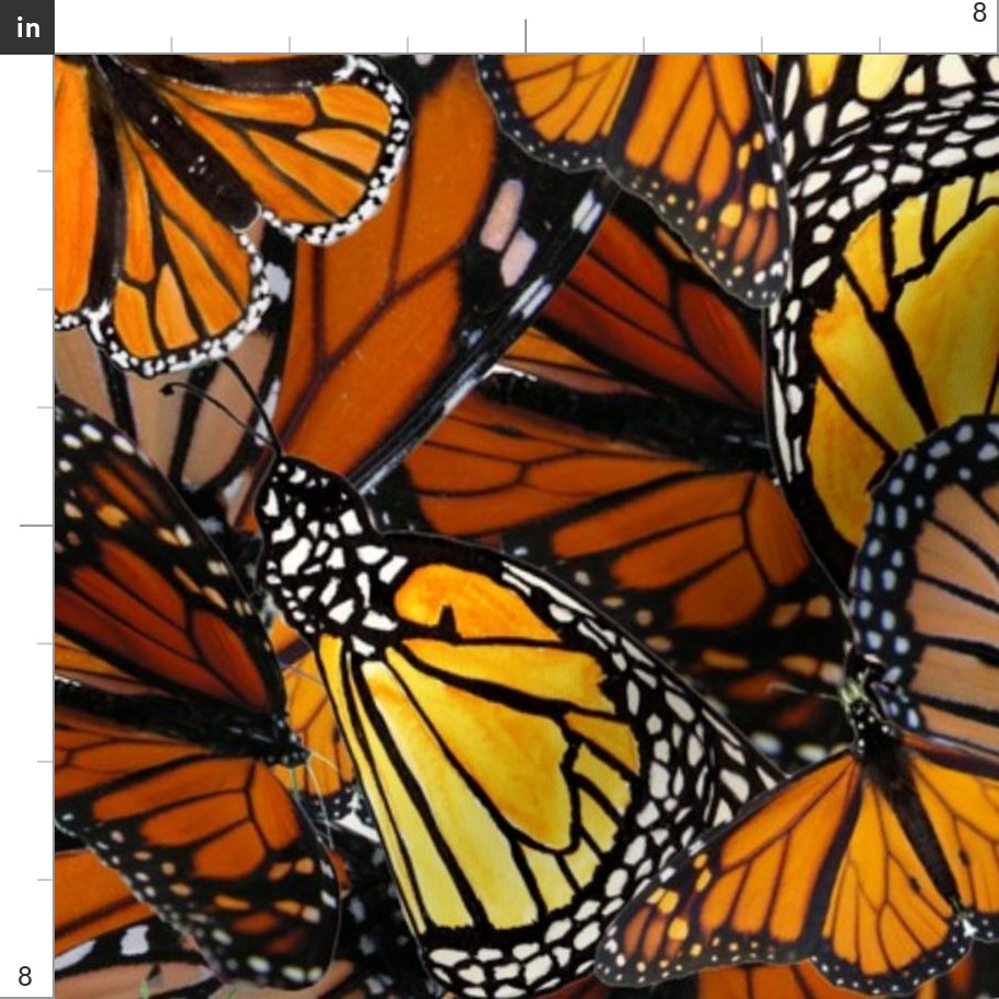 Butterfly With Australian Wanderer Monarch Fabric Printed by Spoonflower BTY