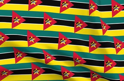 Mozambique flag - Spoonflower