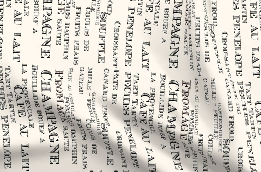 Colorful fabrics digitally printed by Spoonflower - French text glass  splashback background wall paper