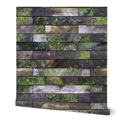 Mossy Wood Garden Wall