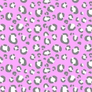 lilac grey leopard