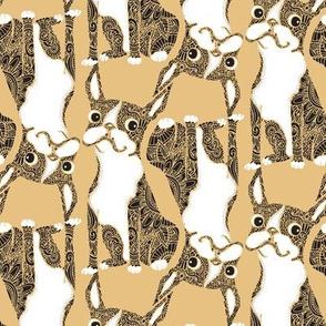 Boston Terrier Yellow