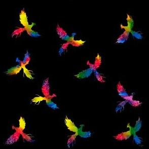 Rainbow Phoenix on Black