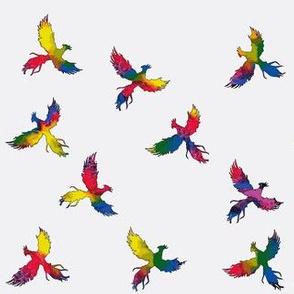 Rainbow Phoenixes on White