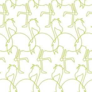 Flamingos_White-Green_SFL