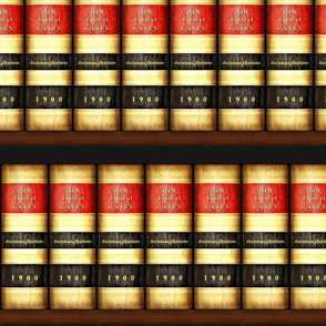 Law Books on Shelves / Bookcase /