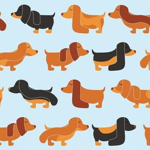 Stylish Dog with Long Ears, Dachshund, Puppy, Fashion