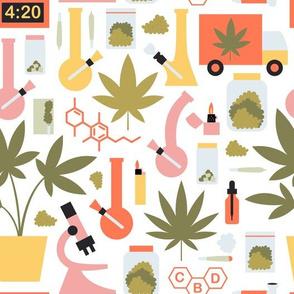 medium scale / cannabis plant in lab