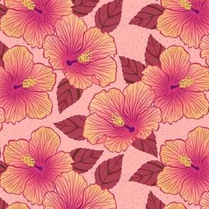 Hibiscus - blush
