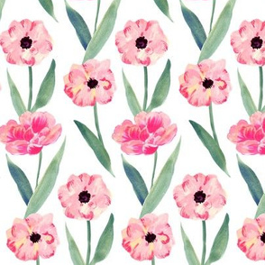 watercolor pink flower -white