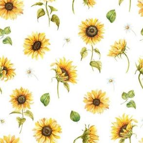 Random Watercolor Sunflowers