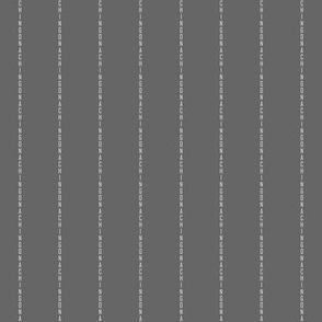 Chingona Pinstripe in Gray