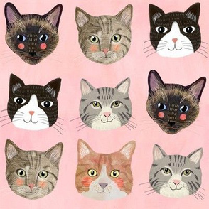 8 Cats - Pink