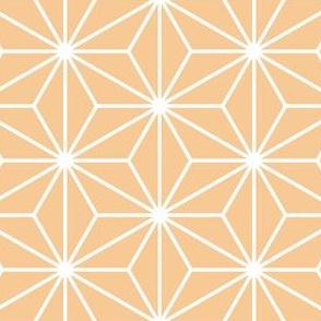 10020352 : SC3C : spoonflower0546 O