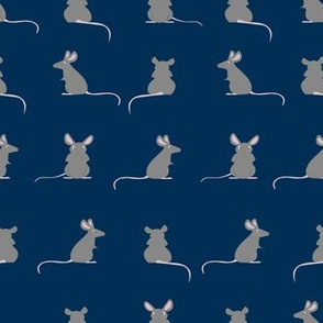 Colored rat at midnight blue background