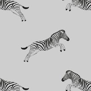 Zebra pattern in grey black