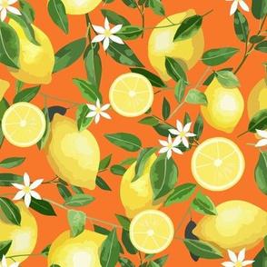 Orange Lemons