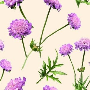 Pincushion Pretty in  Cream