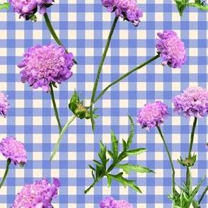 Pincushion Pretty In Blue Gingham