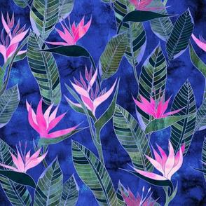 Hawaii Flower 1 bluebell