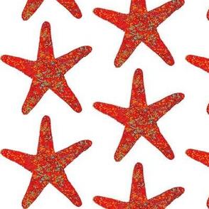 Red Watercolor Starfish