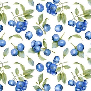 Blueberries Leaves Watercolor