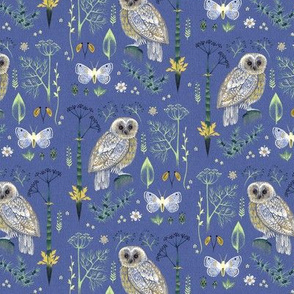 Owls and Moths