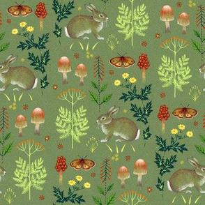rabbits and fungi
