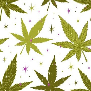 Marijuana  leaves Green and purple