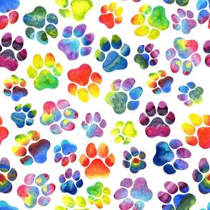 Rainbow Pawprints on White