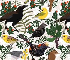 Endangered Birds of Hawaii