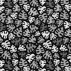 Monstera Doodles in Black, White & Grey