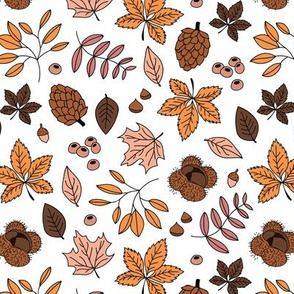 Autumn leaves botanical garden chestnut pine tree forest winter season night brown cinnamon pale earthy neutral