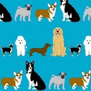 Dog breeds in turquoise
