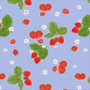 Strawberries on Blue Gingham