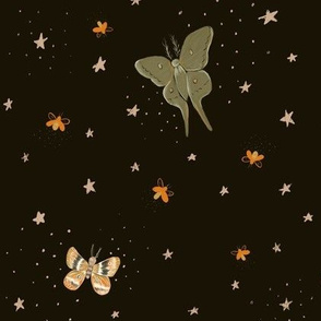 Stay moonlit - moths and fireflies at night