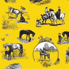 Black Beauty in Yellow