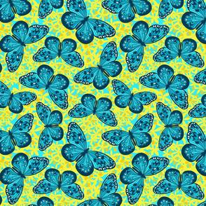 Teal Butterflies for Ovarian Cancer
