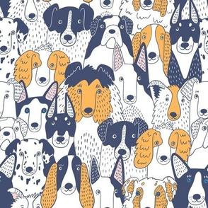 medium scale /Adopt a dog