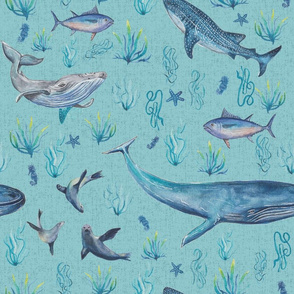 endangered sea animals