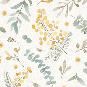 Australian wattle and eucalyptus watercolor floral  - X- LARGE scale