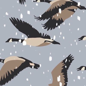 Fly Away home - Canadian geese