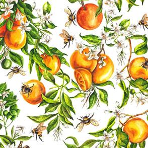 Spring Oranges - Big Scale
