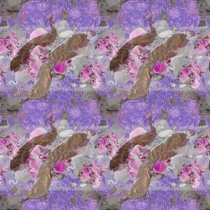 Neon magenta Orchidaceae
