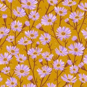 asters - mustard