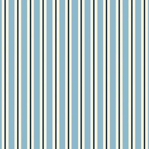 Sky Blue pinstripe