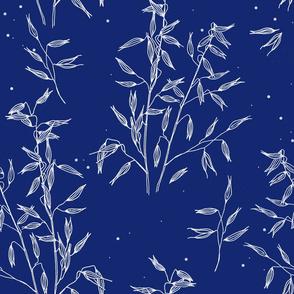 wild seeds on blue