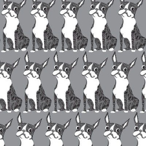 Boston Terrier Light Gray