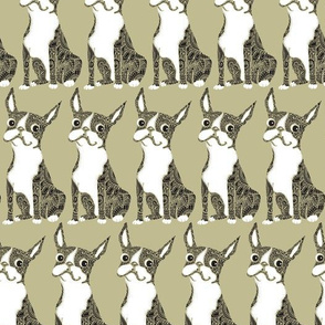 Boston Terrier Light Green